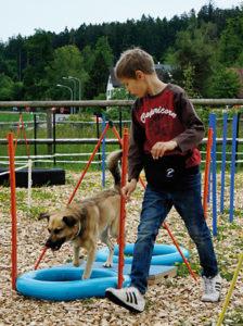 Angebot – Hundeschule Guggisberg