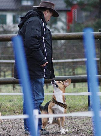 Für welche Mensch-Hund-Teams? – Hundeschule Guggisberg