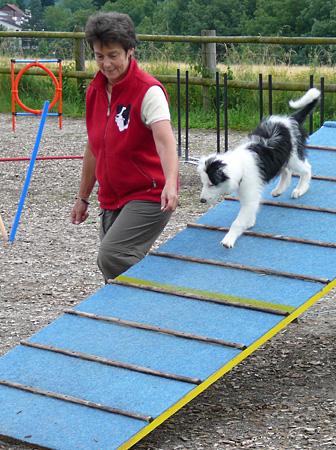 Welpen- und Junghundegruppen – Hundeschule Guggisberg