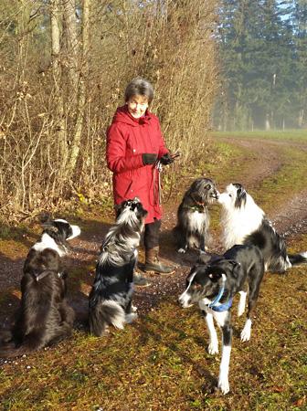 Aktuell – Hundeschule Guggisberg